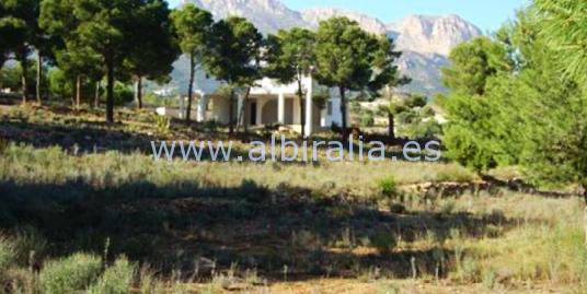 Villa for reform on the large plot I V167P