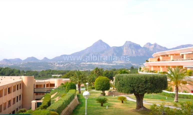 apartment altea sea view