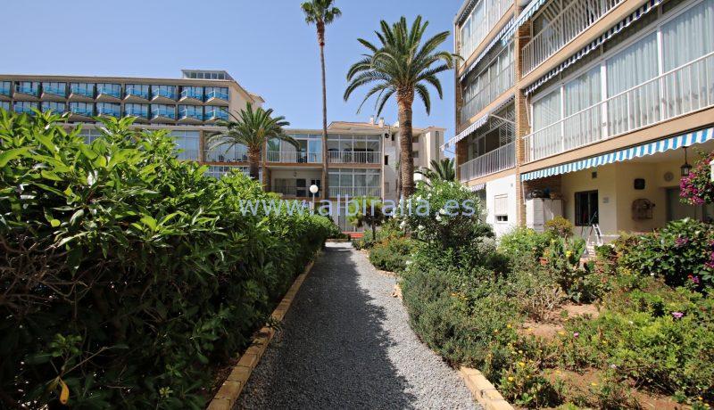 hotel kaktus holidays albir